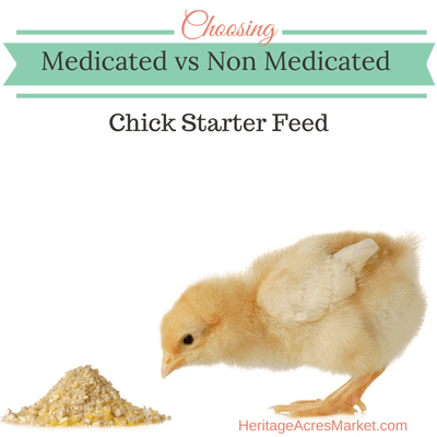 Medicated vs Non-medicated Chick Starter Feed