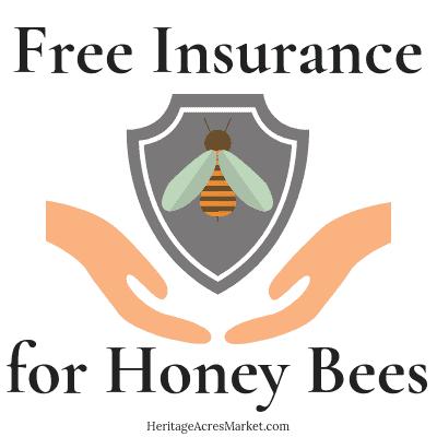 Free Insurance for Honey Bees 1