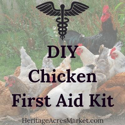 DIY Chicken First Aid Kit