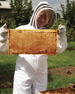 martha stewart beekeeper