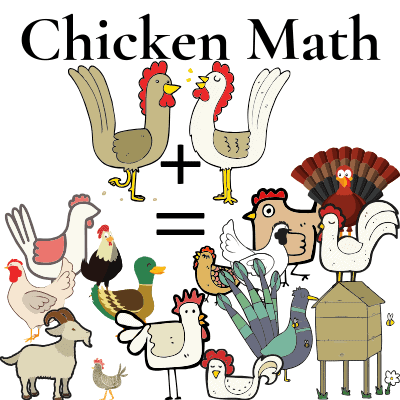 chicken math