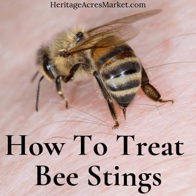 honey bee stinging skin