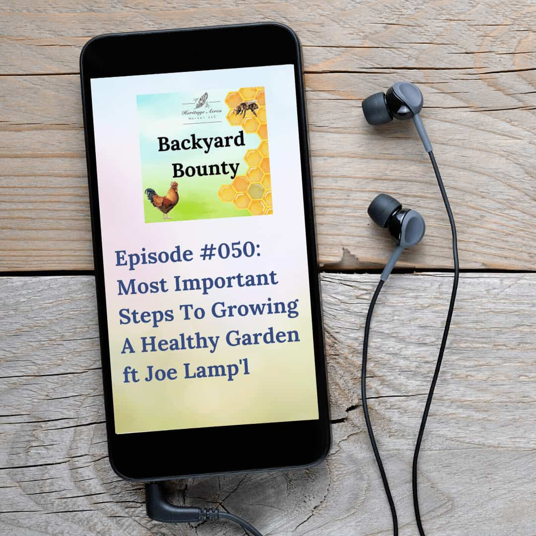 Most Important Steps To Growing A Healthy Garden ft Joe Gardener