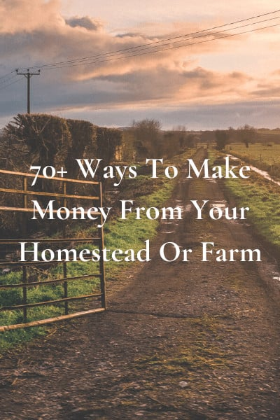 70+ Ways To Make Money From Your Homestead Or Farm