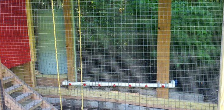 pvc pipe with chicken watering nipples inside coop