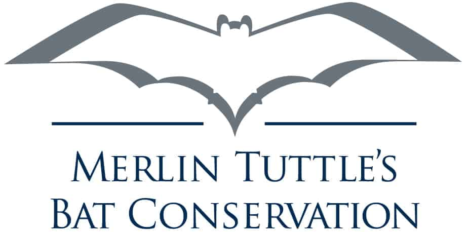 Fascinating Facts about Bats & How To Attract Them ft Dr. Merlin Tuttle 1