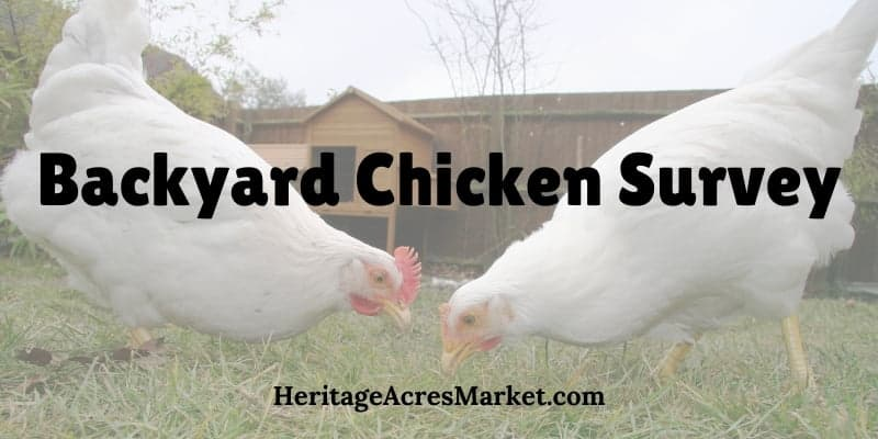 Backyard Chicken Survey: Interesting facts about backyard flocks and the people that keep them 29