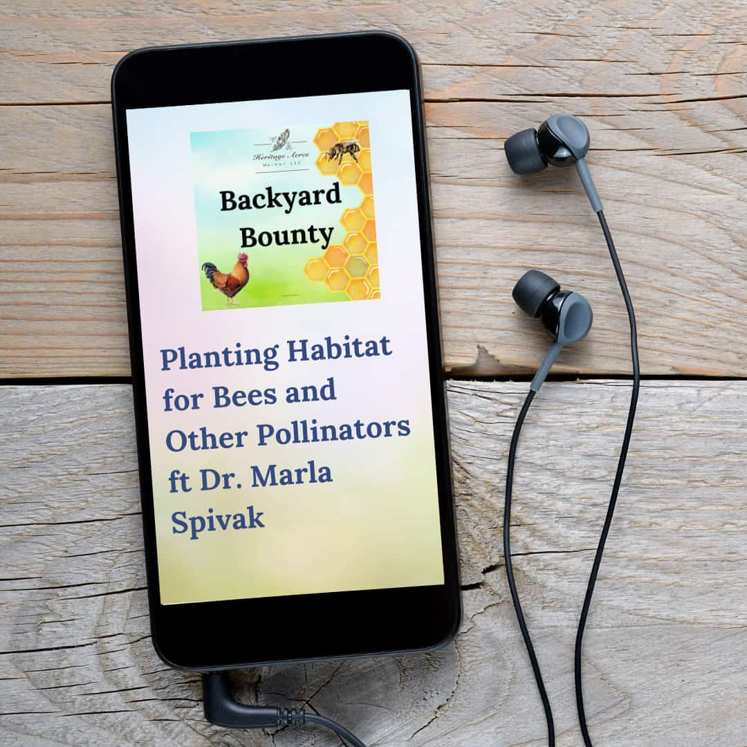 Planting Habitat for Bees and Other Pollinators ft Dr. Marla Spivak