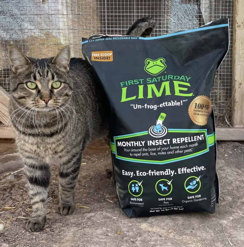 First Saturday Lime: How To Use This Insect Repellant And Deodorizer Around The Farm And Garden 4