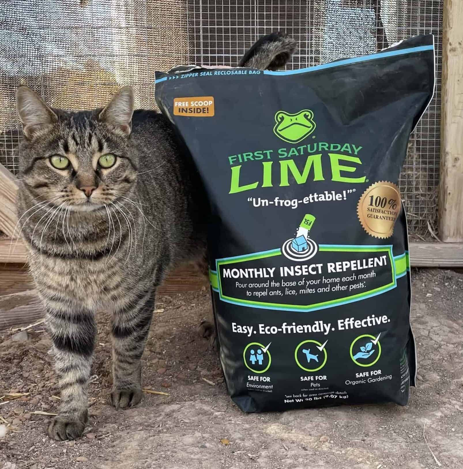 First Saturday Lime: How To Use This Insect Repellant And Deodorizer Around The Farm And Garden