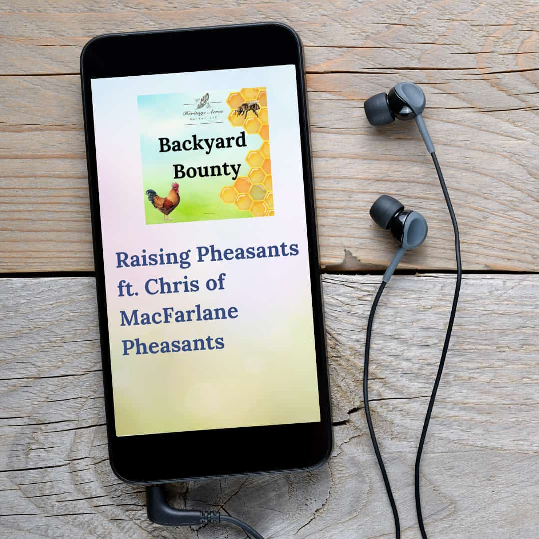 An Introduction to Raising Pheasants ft. Chris of MacFarlane Pheasants