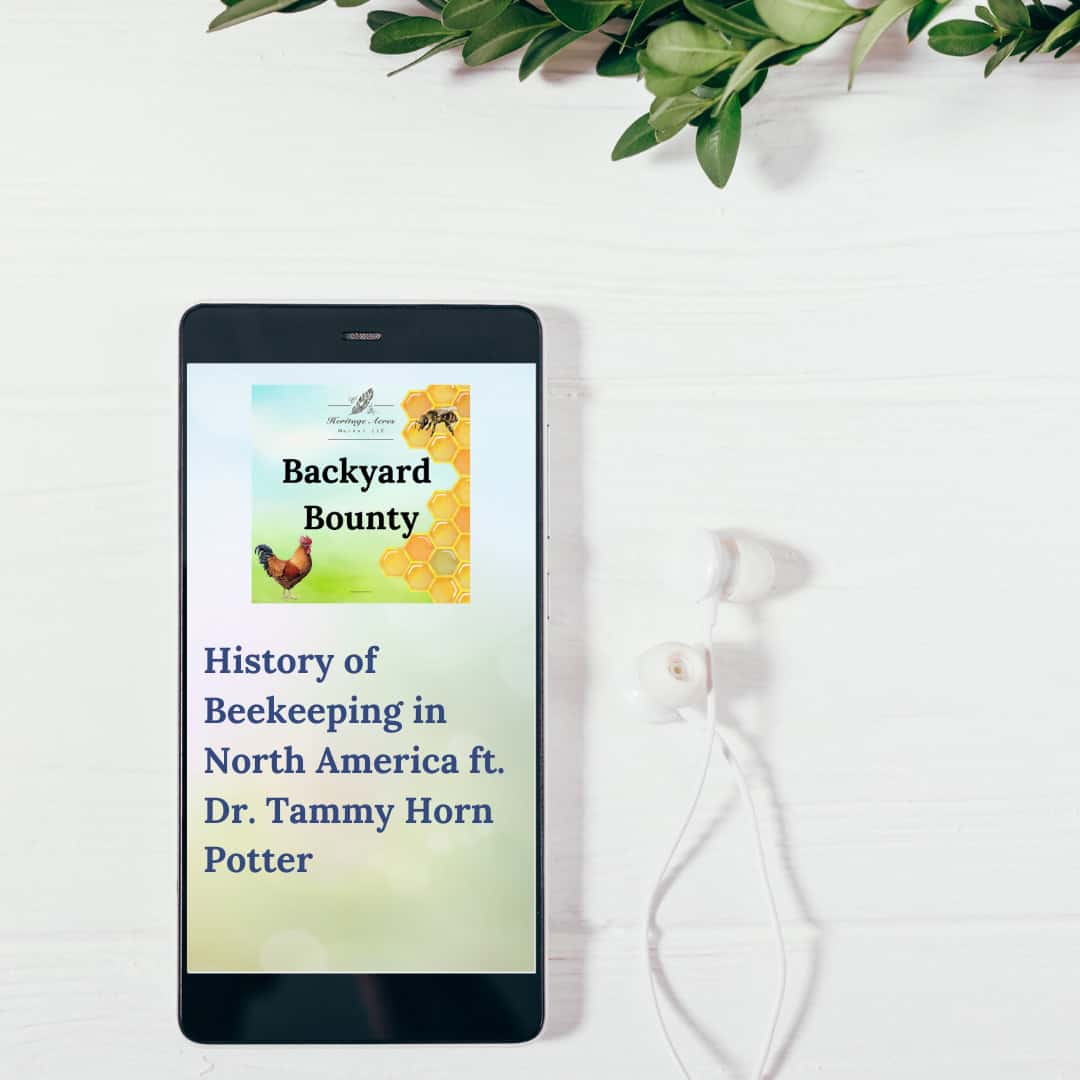 History of Beekeeping in North America ft. Dr. Tammy Horn Potter