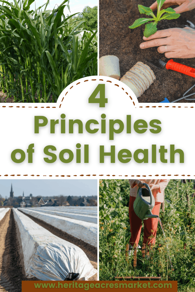 4 pictures of soil cover